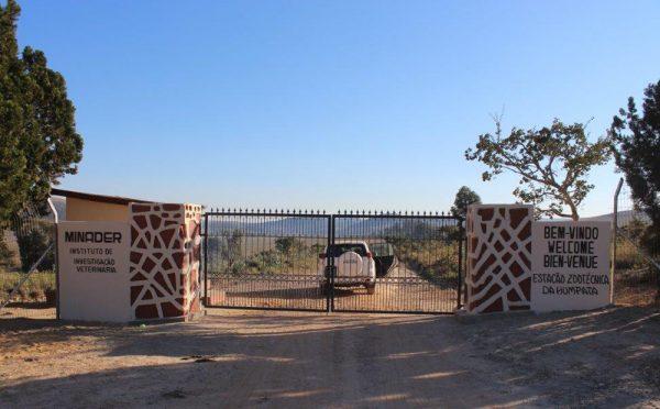 שער הכניסה לאחר השיפוץ